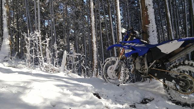 雪中つーりんぐの下見!