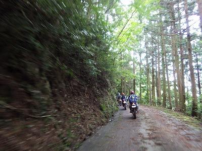 剣山スーパー林道!